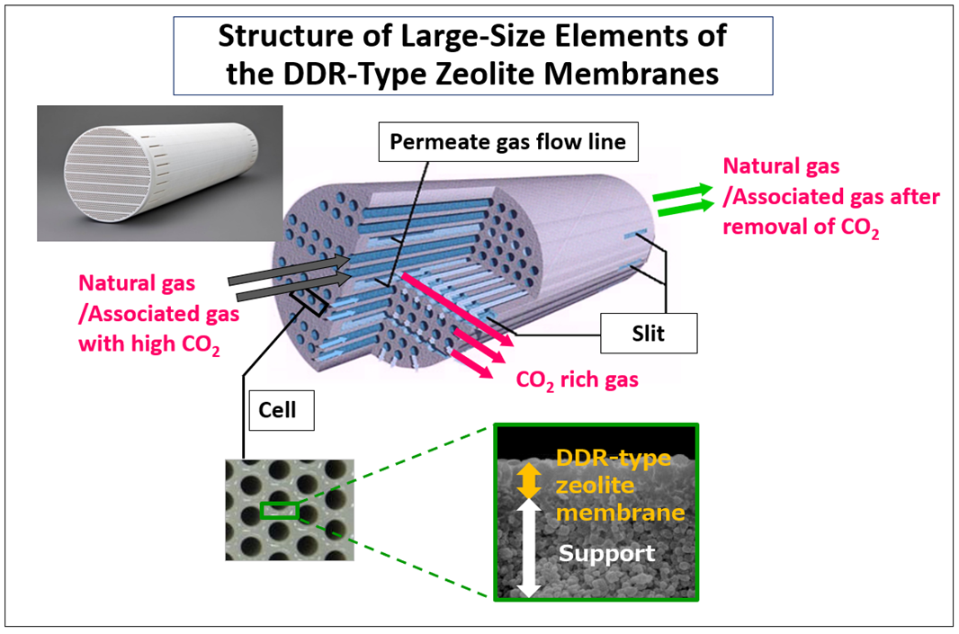 Structure of Large-Size Elements of the DDR-Type Zeolite Membranes